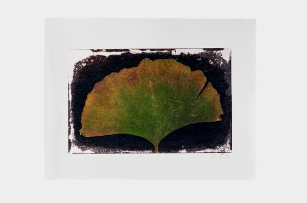 leaf-print-10
