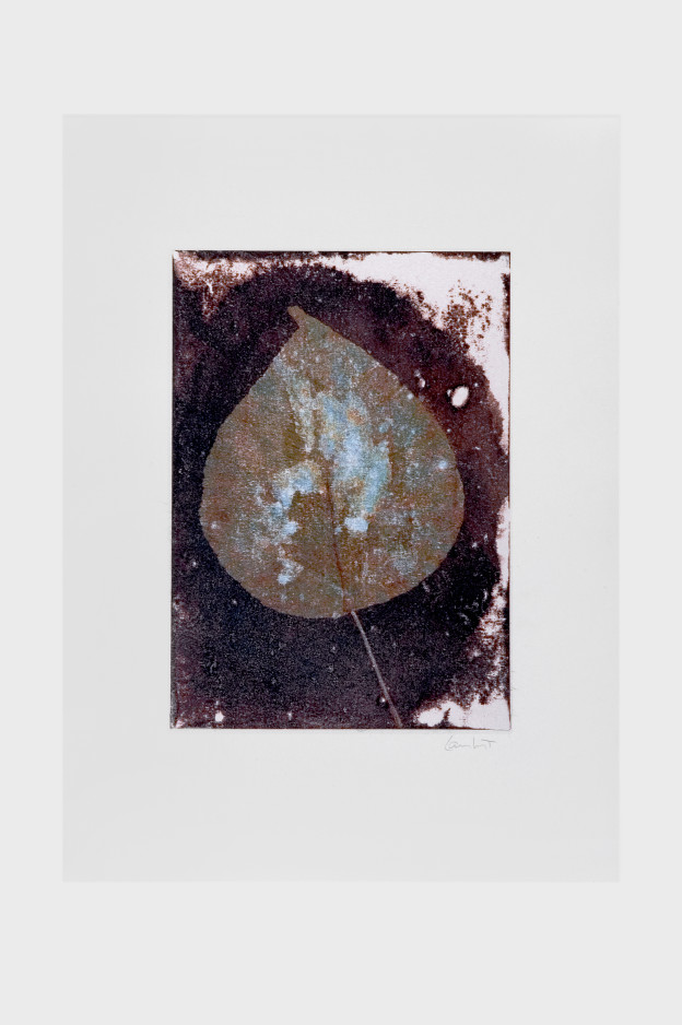 leaf-print-2
