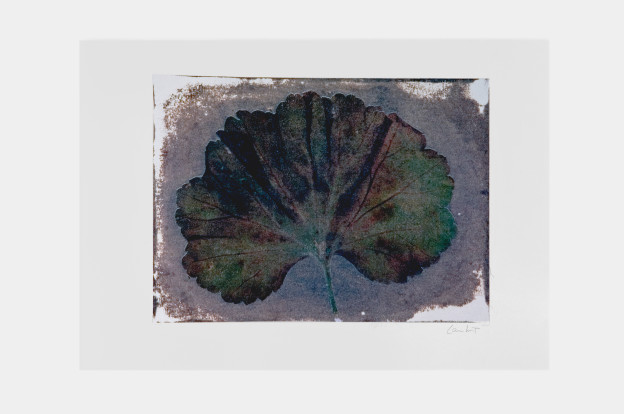 leaf-print-7