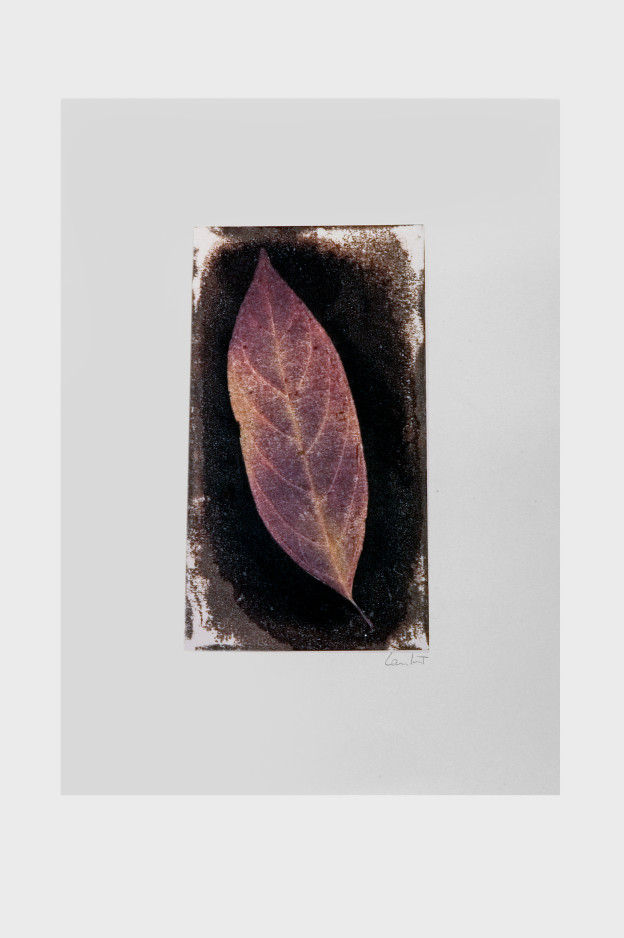 leaf-print-9
